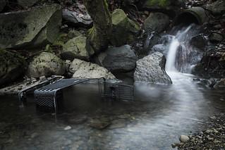 Shopping cart in creek