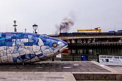 Belfast Laganside (Eskling) Tags: fish sculpture laganside belfast steam train harlandandwolff crane goliath sampson northern ireland