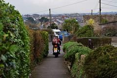 January (Eiran Lapham) Tags: cat motorbike banjo van coffee bw field penzance cornwall