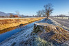 Frosty Morning (Harald Schnitzler) Tags: sun warm warming heat cold frost chilliness rietaach perspective hot contrast trunk tree path