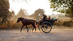 Burmese man riding horse cart on dusty road (phuong.sg@gmail.com) Tags: archeology architecture art asia asian attraction bagan buddhism buddhist burma burmese carriage cart culture dirt exploring heritage horse landmark myanmar pagoda religion religious revered road serene sightseeing southeast stupas temple theravada tour tourism tourist tradition traditional tranquil travel wagon worship