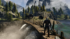 A bear problem (simonmino) Tags: witcher3 geralt skellige bear roach