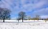 En mode douceur (Diegojack) Tags: echandens vaud suisse hiver froid neige campagne paysages