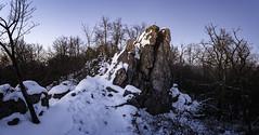 After Sunset (viktorpus) Tags: fujifilmxe1 samyang122 wideangle panorama evening rocks snow trees
