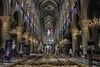 NOTRE-DAME DE PARIS INTERNO (Gina.DiDato) Tags: parigi paris notredame cattedrale cattedraledinotredame francia