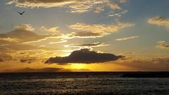 Beautiful noon (spicros78) Tags: sunset sunsetwithbirds samsungg920f samsunggalaxys6 glyfada greece beach boats mobile