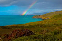 Reverie (kirstenscamera) Tags: california ca marinheadlands clouds overcast rain aftertherain norcal sf sanfrancisco rainbow winter 2017 rainbows somewhereovertherainbow grass field meadow ocean pacific serene dramatic cliffs outdoors outside daytime water coast shore morning under over rocky