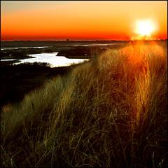 KINDLING (ESOX LUCIUS) Tags: sunset holland me dunes taco fireinthesky naturereservedekwadehoek