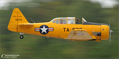 Texan (Tommy Simms) Tags: motion art 20d plane airplane flying inflight perfect canon20d aircraft aviation airplanes interestingness1 100v10f canoneos20d airshow motionblur planes airforce panning canoneos warbird texan airshows usairforce flyby militaryaviation ffc t6texan ef75300 tommysimms greatgeorgiaairshow n299fm vintageflights ta533 propblur cdpg specobject 3030300 tsexplore copyrightwwwtommysimmscom 6358 goldstaraward aviationyellow thewanderlust