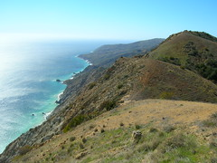 Coast of Santa Catalina Island, facing San Clemente