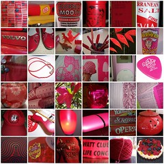 Reds & Pinks in my world (stupid clever) Tags: pink red project fdsflickrtoys spectrum projectspectrummarch