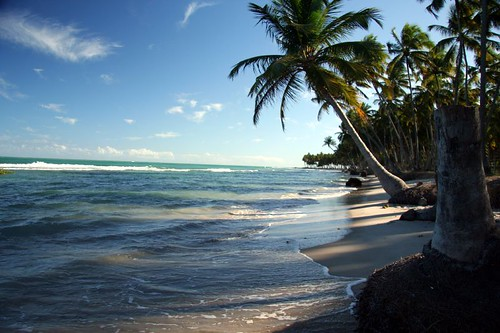 Praia dos Carneiros Tamandaré Pernambuco