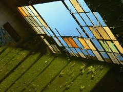 (hurleygurley) Tags: california blue orange reflection green abandoned window topf25 water 1025fav wonder puddle interestingness industrial decay g fringe eerie historic adventure explore sanfranciscobayarea algae forsaken rgb discovery hg hurleygurley urbanexploring escapade fringes snooping 30fav flintink westberkeley utatabluegreen artlibre californiaink wewonder elisabethfeldman faveset