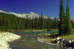 Canada, Jasper National Park (Dietmar Temps) Tags: canada nationalpark jasper northamerica banff