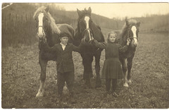 Real Photo Postcard: A Sister, A Brother, Three Horses [Reposted --- Has Love, Wants More] (mrwaterslide) Tags: old horses kids vintage found antique postcard missouri oldphoto vernacular brotherandsister ozarks whiteblaze rppc missouriozarks