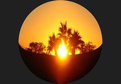I'll Follow the Sun (oybay) Tags: arizona sun phoenix paintshoppro notpicked phoenicianresort 54points