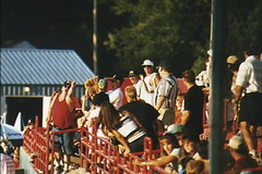 Into the Stands