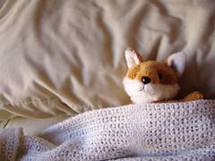 Good Morning (hushed_lavinia) Tags: morning cute bed fox plushie hi sleepingin blankey snoozy