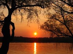 Potomac Silhouette at Sunset (Washington) (Bill in DC) Tags: sunset washingtondc 2006 potomac potomacriver powershotpro1 natureslight specnature bluelist 123faves