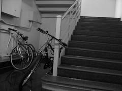 Bikes (Lazer Kaufman) Tags: dormitory amherst umass