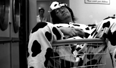 The Moo in need of a Nurse (mandrake68) Tags: spots nurse cart laundromat washing stef espanola mondo steffiejupe tpu dzgnboy