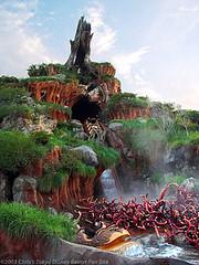 Tokyo Disney Splash Mountain ride