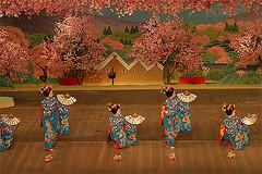 A dana das maikos (lucianamisura) Tags: japan dance kyoto maiko geiko geisha japo gueixa miyakoodori
