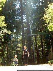 walking down sequoia drive - dscf8636