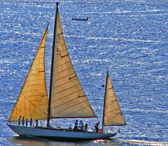 I'll go sailing no more (neloqua) Tags: ocean blue light sea summer brazil sunlight beach southamerica water beautiful riodejaneiro wonderful wonder fun happy daylight boat amazing fantastic fishing perfect colorful sailing great joy adorable sunny bluesky chapeau excellent summertime moment lovely charming shining niteroi sunnyday