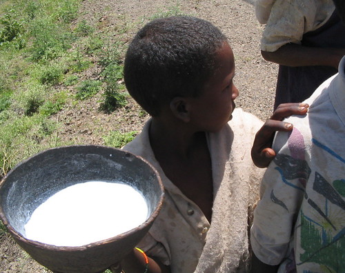 camel milk by guuleed.