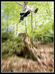 jump 5 (l@mie) Tags: wood forest photoshop canon spring jump edited entertainment lamer canonpowershots70 lmer lamerentertainment