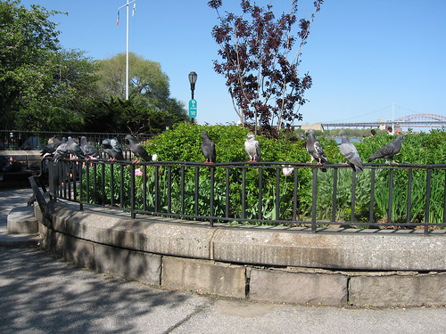 Carl Schurz Park - Parks/Recreation, Attractions/Entertainment - E 86th St, New York, NY, United States