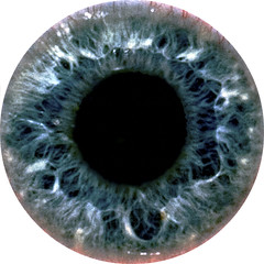 My Left Eye (Bill Adams) Tags: usa eye me explore eyeball getty hi lefteye waikoloa