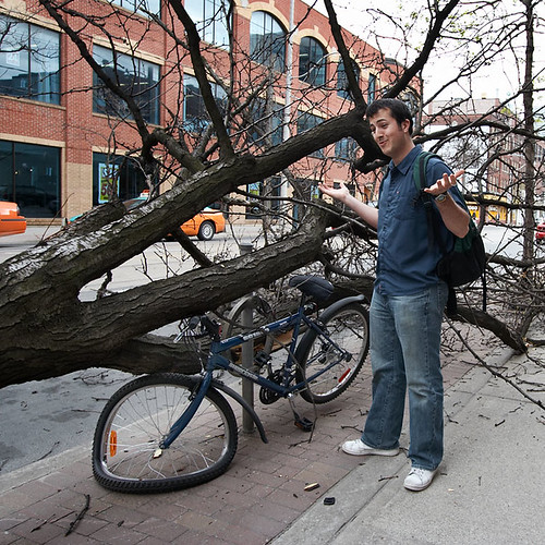 fallen_tree_bike_04_owner