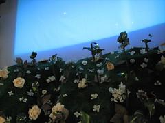 hill and sky (andrew d miller) Tags: georgiatech firefly lightfall tangiblemedia2006 languo allisonsall mattmckeon
