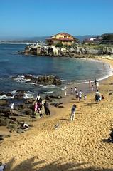 Monterey, California beach (canbalci) Tags: california monterey highway1 carmel