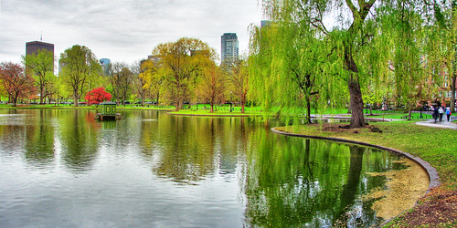Boston Public Gardens Panorama by Яick Harris.
