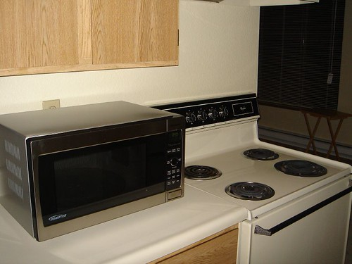 Best Microwave Ever