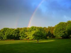 Moments ago (Many Muses) Tags: home rain rainbow manymuses doublerainbow myfrontyard wwwmanymusescom momentsago