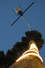 Late Evening Palm Trimming (seadigs) Tags: california sky night photoshop lights losangeles day palm helicopter manhattanbeach redondo