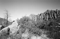 (David Bivins) Tags: arizona diafine chiricahua canonl1 ilforddelta100 heliar15mm chiricahuanationalmonument 20060413 75iso davidbivins