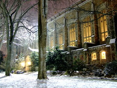Law Library (Winter)