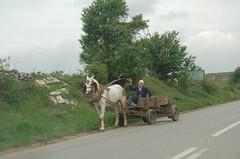 On the road 10 (A Taste of Kosova) Tags: kosova kosovo vetvendosja