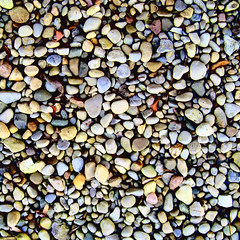 The colors of rocks (copaceticity) Tags: autumn rocks colorful stones pebbles lookingdown fr mybackyard pl4n5 photographed◊patterns copaceticity