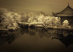 The clarity of dreams (IrenaS) Tags: sepia photoshop landscape montreal infrared botanicalgardens hoyar72 c2020z irenas