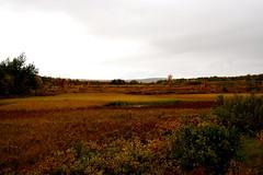Autumn in Finnmark, Norway (KarlJE) Tags: autumn norway finnmark specnature