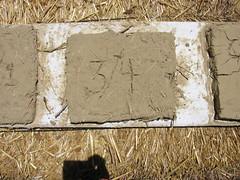 cobbikesjune006 016 (ffederico) Tags: cob ecovillage