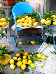 lemon chair - by chotda
