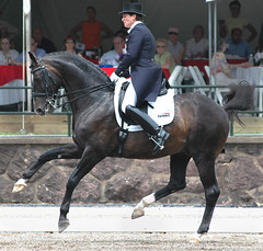 USEF Grand Prix Special (Rock and Racehorses) Tags: horses nj gladstone dressage usef