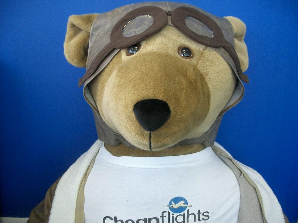 Biggles The Bear - yup, it's me...